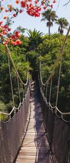Türtapete - Hängebrücke Bäume Wald Blumen | no. 770 - Vorschau 5