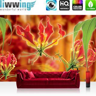 liwwing Vlies Fototapete 416x254cm PREMIUM PLUS Wand Foto Tapete Wand Bild Vliestapete - Orchideen Tapete Blumen Blüten Blätter Orchideen rot - no. 2598