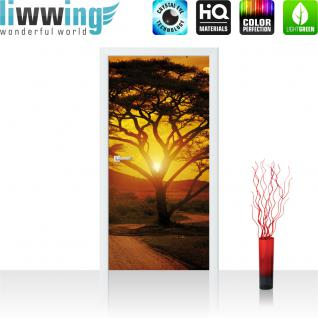 liwwing Türtapete selbstklebend 91x211 cm PREMIUM PLUS Tür Fototapete Türposter Türpanel Foto Tapete Bild - Sonnenuntergang Baum Weg - no. 284