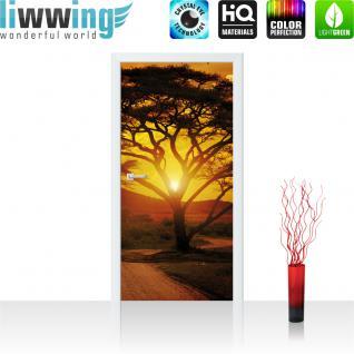 liwwing Vlies Türtapete 91x211 cm PREMIUM PLUS Tür Fototapete Türposter Türpanel Foto Tapete Bild - Sonnenuntergang Baum Weg - no. 284