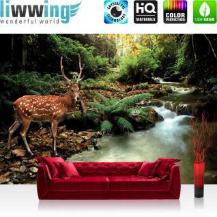 liwwing Vlies Fototapete 400x280 cm PREMIUM PLUS Wand Foto Tapete Wand Bild Vliestapete - Tiere Tapete Wald Hirsch Geweih Natur Bach grün braun - no. 399