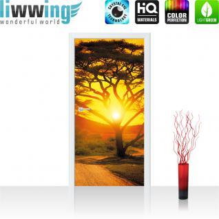 liwwing Türtapete selbstklebend 91x211 cm PREMIUM PLUS Tür Fototapete Türposter Türpanel Foto Tapete Bild - Sonnenuntergang Baum Weg - no. 999
