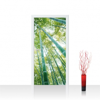 Türtapete - Wald Bäume Himmel   no. 410