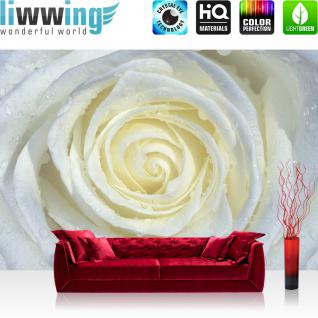 liwwing Vlies Fototapete 312x219cm PREMIUM PLUS Wand Foto Tapete Wand Bild Vliestapete - Blumen Tapete Rose Blume Blüte Wassertropfen Tropfen weiß - no. 2066
