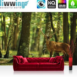 liwwing Vlies Fototapete 104x50.5cm PREMIUM PLUS Wand Foto Tapete Wand Bild Vliestapete - Tiere Tapete Hirsch Tier Fell Geweih Wald Bäume braun - no. 2996