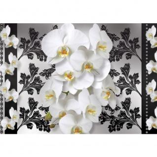 Fototapete Orchideen Tapete Ornamente Blume Orchidee Blüte Ranke Blätter Herzen weiß   no. 1960