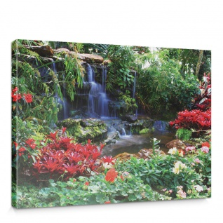 Leinwandbild Wasserfall Urwald Pflanzen Baum Natur | no. 448