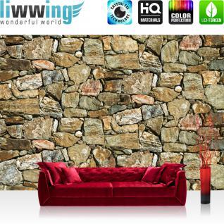 liwwing Vlies Fototapete 300x210 cm PREMIUM PLUS Wand Foto Tapete Wand Bild Vliestapete - Steinwand Tapete Steinwand Steine Steinoptik braun - no. 618