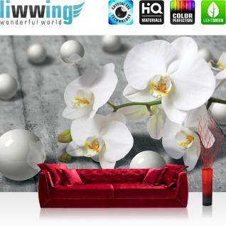 liwwing Vlies Fototapete 416x254cm PREMIUM PLUS Wand Foto Tapete Wand Bild Vliestapete - Orchideen Tapete Orchidee 3D Kugeln schwarz weiß - no. 1882