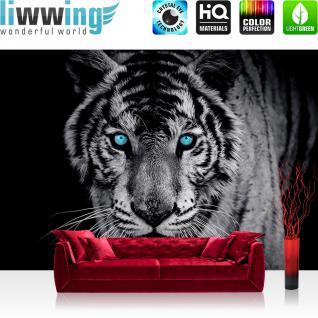 liwwing Vlies Fototapete 300x210 cm PREMIUM PLUS Wand Foto Tapete Wand Bild Vliestapete - Tiere Tapete Tiger Gesicht Auge blau schwarz-weiß blau - no. 426