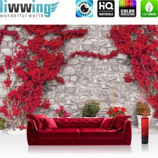liwwing Vlies Fototapete 312x219cm PREMIUM PLUS Wand Foto Tapete Wand Bild Vliestapete - Steinwand Tapete Steinoptik Steine Pflanze Bougainvillea Mediterran grau - no. 2925