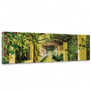 Leinwandbild Garten Weinblätter Pflanze Säulen grün Garten Blumen | no. 333