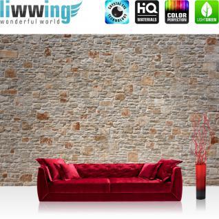 liwwing Vlies Fototapete 350x245 cm PREMIUM PLUS Wand Foto Tapete Wand Bild Vliestapete - ROYAL STONE WALL - Steinwand Steintapete Wand Wall 3D Steinmauer Steintapete - no. 082