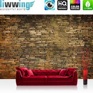 liwwing Vlies Fototapete 416x254cm PREMIUM PLUS Wand Foto Tapete Wand Bild Vliestapete - Steinwand Tapete Steinoptik Steine Kacheln braun - no. 3020