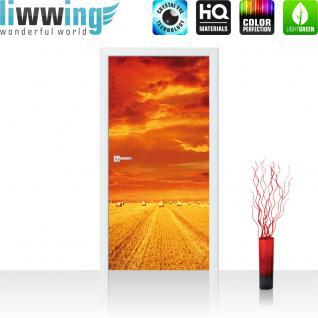 liwwing Türtapete selbstklebend 91x211 cm PREMIUM PLUS Tür Fototapete Türposter Türpanel Foto Tapete Bild - Feld Himmel Wolken - no. 1005