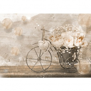 Fototapete Blumen Tapete Blüten Blätter Rosen Herz Dreirad Holz Kreise beige   no. 2174