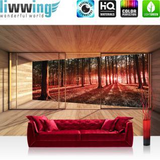liwwing Fototapete 254x168 cm PREMIUM Wand Foto Tapete Wand Bild Papiertapete - Wald Tapete Raum Holz Wald Bäume Natur rot - no. 3138