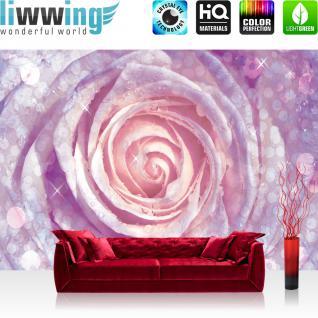 liwwing Vlies Fototapete 350x245 cm PREMIUM PLUS Wand Foto Tapete Wand Bild Vliestapete - Blumen Tapete Rose Tropfen Blume Wasser rosa - no. 602