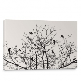 Leinwandbild Baum Vogel Vögel Blätter Äste | no. 4546