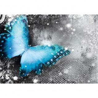 Fototapete Kunst Tapete Ornamente Streifen Schmetterling Ranke grau | no. 2827