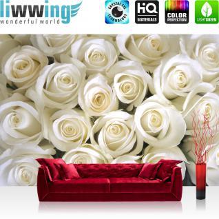 liwwing Vlies Fototapete 400x280 cm PREMIUM PLUS Wand Foto Tapete Wand Bild Vliestapete - Blumen Rose Blüte - no. 184