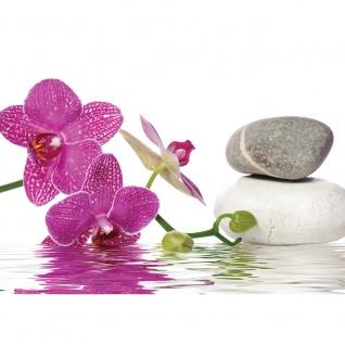 Fototapete Wellness Tapete Orchidee Wasser Steine Wellness pink | no. 1306