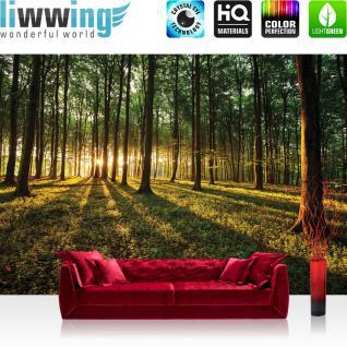 liwwing Vlies Fototapete 350x245 cm PREMIUM PLUS Wand Foto Tapete Wand Bild Vliestapete - Wald Tapete Sonnenuntergang Wald Bäume Wiese grün - no. 638