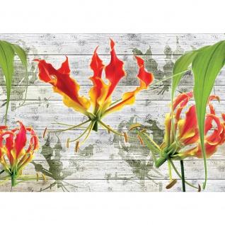 Fototapete Holz Tapete Blumen Pflanzen Natur Holzwand Holz bunt | no. 3107