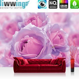 liwwing Fototapete 254x168 cm PREMIUM Wand Foto Tapete Wand Bild Papiertapete - Blumen Tapete Blüten Rosen Liebe rosa - no. 3041