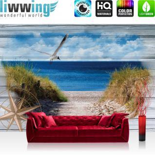 liwwing Vlies Fototapete 312x219cm PREMIUM PLUS Wand Foto Tapete Wand Bild Vliestapete - Meer Tapete Sand Küste Windrose Schilf Möwe natural - no. 3180