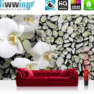 liwwing Vlies Fototapete 312x219cm PREMIUM PLUS Wand Foto Tapete Wand Bild Vliestapete - Orchideen Tapete Orchidee Wellness Steine grau - no. 1340