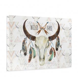 Leinwandbild Schädel Büffel Federn Indianer Wild   no. 3488