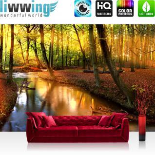 liwwing Vlies Fototapete 350x245 cm PREMIUM PLUS Wand Foto Tapete Wand Bild Vliestapete - Wald Bäume Natur - no. 252