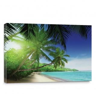 Leinwandbild Meer Wasser Palmen Paradies   no. 3160