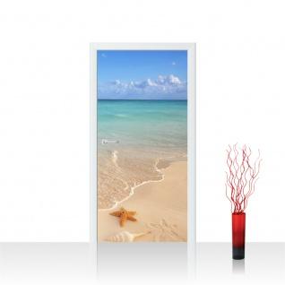 Türtapete - Natur Strand Meer Sommer Karibik Seestern Sand Muschel | no. 4296