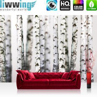 liwwing Vlies Fototapete 208x146cm PREMIUM PLUS Wand Foto Tapete Wand Bild Vliestapete - Natur Tapete Bäume Birken Wald Stamm weiß - no. 2111