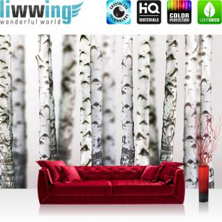 liwwing Vlies Fototapete 312x219cm PREMIUM PLUS Wand Foto Tapete Wand Bild Vliestapete - Natur Tapete Bäume Birken Wald Stamm weiß - no. 2111