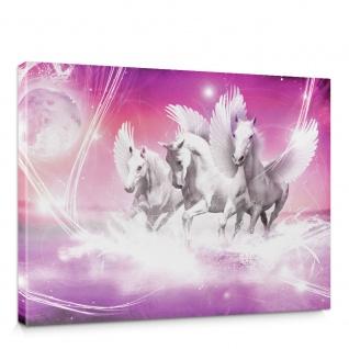Leinwandbild Pegasus Wasser Mond Sterne lila Illustration Foto | no. 1078