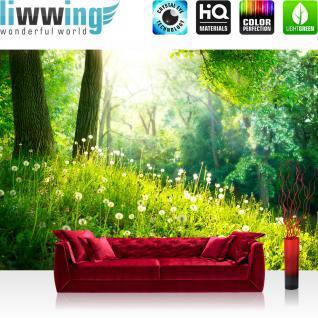 liwwing Vlies Fototapete 300x210 cm PREMIUM PLUS Wand Foto Tapete Wand Bild Vliestapete - SUNNY FOREST - Wald Bäume Natur Baum grün Sonnenschein Sonne - no. 030
