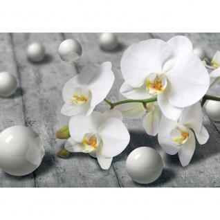 Fototapete Orchideen Tapete Orchidee 3D Kugeln schwarz - weiß | no. 1882