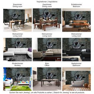 liwwing Vlies Fototapete 208x146cm PREMIUM PLUS Wand Foto Tapete Wand Bild Vliestapete - Natur Tapete Raum Wald Natur Holzwände Holz Scheibe grün - no. 1256 - Vorschau 5