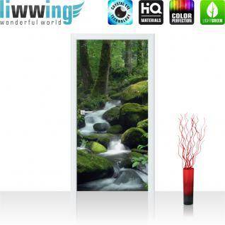 liwwing Türtapete selbstklebend 91x211 cm PREMIUM PLUS Tür Fototapete Türposter Türpanel Foto Tapete Bild - Wasserfall Wald Bäume Felsen - no. 446