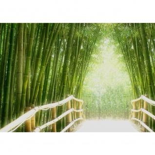 Fototapete PREMIUM PLUS Wand Foto Tapete Bild Vliestapete - BAMBOO WALK - Bambusweg Bambuswald Dschungel Asia Asien Bamboo Way Wald - no. 002