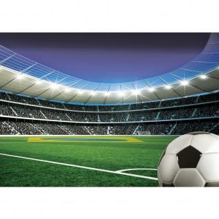Fototapete Fussball Tapete Stadion Tribüne Fussballfeld Lichter Flagge Brasilien grün   no. 2084