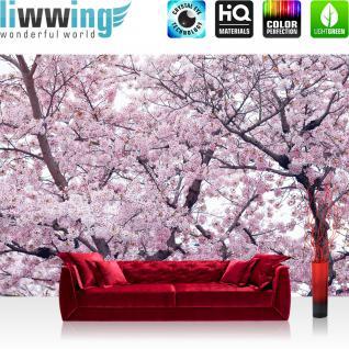 liwwing Vlies Fototapete 254x184cm PREMIUM PLUS Wand Foto Tapete Wand Bild Vliestapete - Pflanzen Tapete Apfelblüten Kirschblüten Baum natural - no. 3529