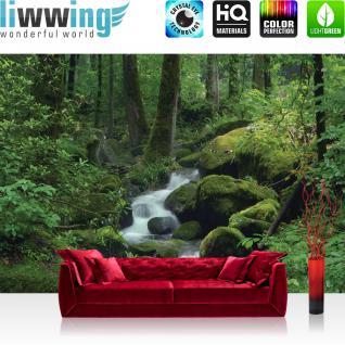 liwwing Vlies Fototapete 350x245 cm PREMIUM PLUS Wand Foto Tapete Wand Bild Vliestapete - Wald Tapete Wasserfall Wald Bäume Felsen Natur Baum grün - no. 446