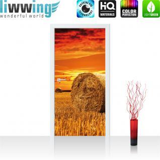 liwwing Türtapete selbstklebend 91x211 cm PREMIUM PLUS Tür Fototapete Türposter Türpanel Foto Tapete Bild - Feld Heuballen Himmel Wolken - no. 1006