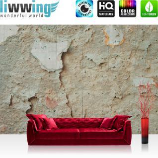 liwwing Vlies Fototapete 152.5x104cm PREMIUM PLUS Wand Foto Tapete Wand Bild Vliestapete - Steinwand Tapete Wand Textur Stein beige - no. 1865