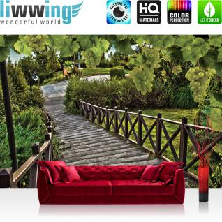 liwwing Vlies Fototapete 416x254cm PREMIUM PLUS Wand Foto Tapete Wand Bild Vliestapete - Wein Tapete Weg Weintrauben grün - no. 3092