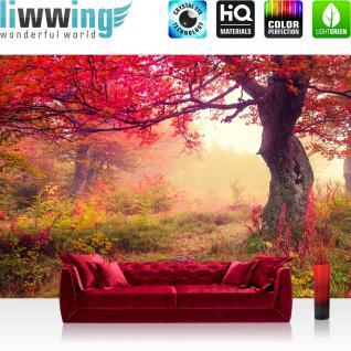 liwwing Vlies Fototapete 350x245 cm PREMIUM PLUS Wand Foto Tapete Wand Bild Vliestapete - Ornamente Tapete Blumen Bunt Natur Sommer bunt - no. 258